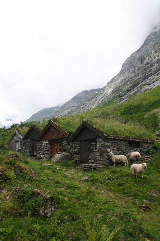 Grassed huts, Urasetra