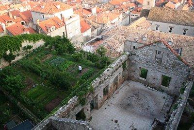 Dubrovnik garden