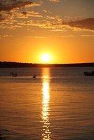 sunsetmonkey.jpg
