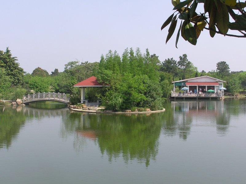 五一游植物园
