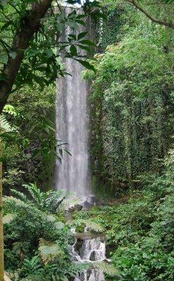 Jurong Bird Park - African waterfall