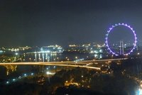 Singapore Flyer after dark