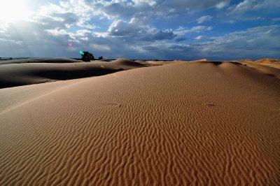 Dunes Erg Chebbi