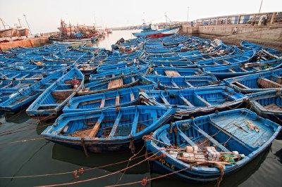 2012.09.10 Marruecos Essaouira y alrededores0080 copia