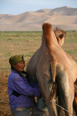 Gobi Desert Trip