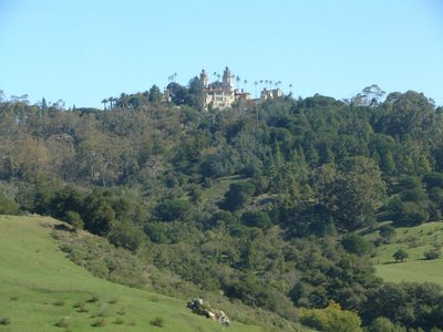 Day 180 - Hearst Castle, Forest