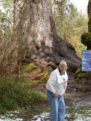 Day 209 - Worlds Largest Spruce Tree & Mom