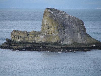 Day 210 - Rock with Eagles, Sea Lions and Sea Gulls