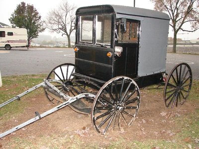 Day 74 - Amish Buggy