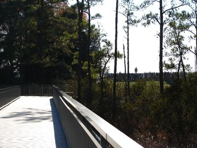 Day 89 - Jamestown, Swamp Bridge
