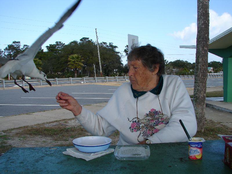 Day 138 - Carrabelle Beach, Mom Feeding Terns