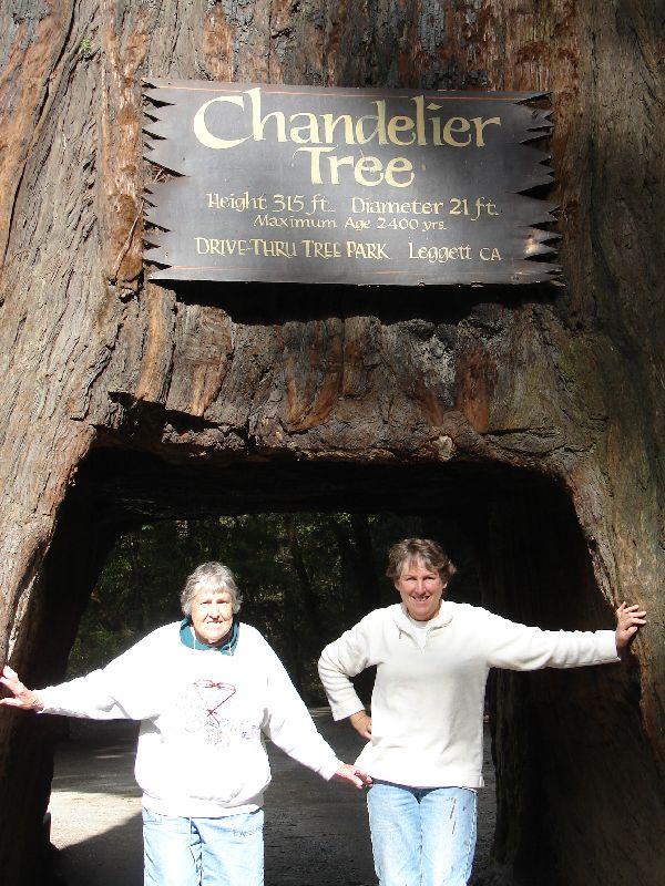 Day 198 - Chandler Tree, Mom & I