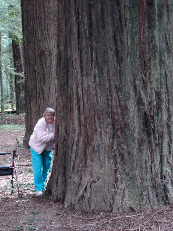 Day 199 - CA Redwoods, Mom & Tree
