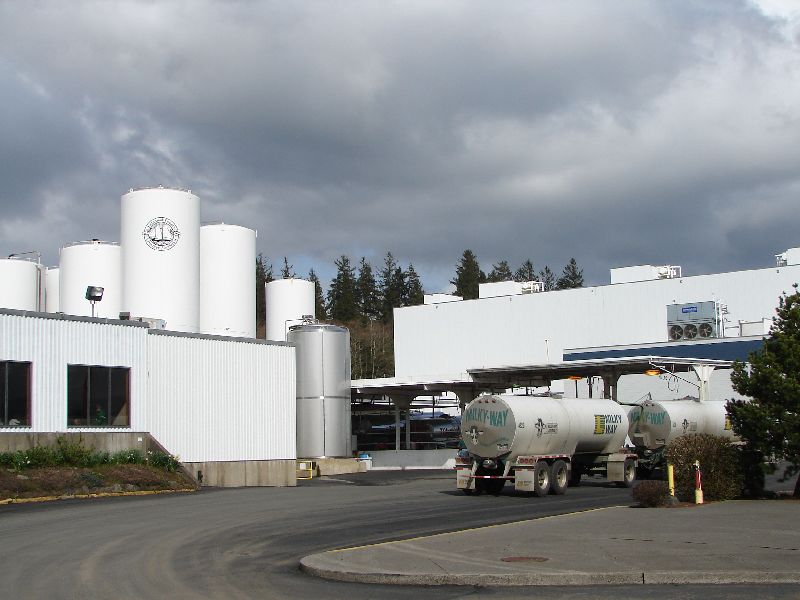 Day 205 - Tillamook Cheese Factory