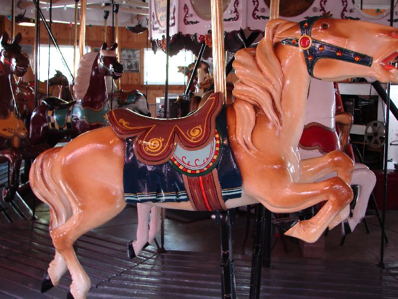 Day 29 - Carrousel Museum, Horse on Ride