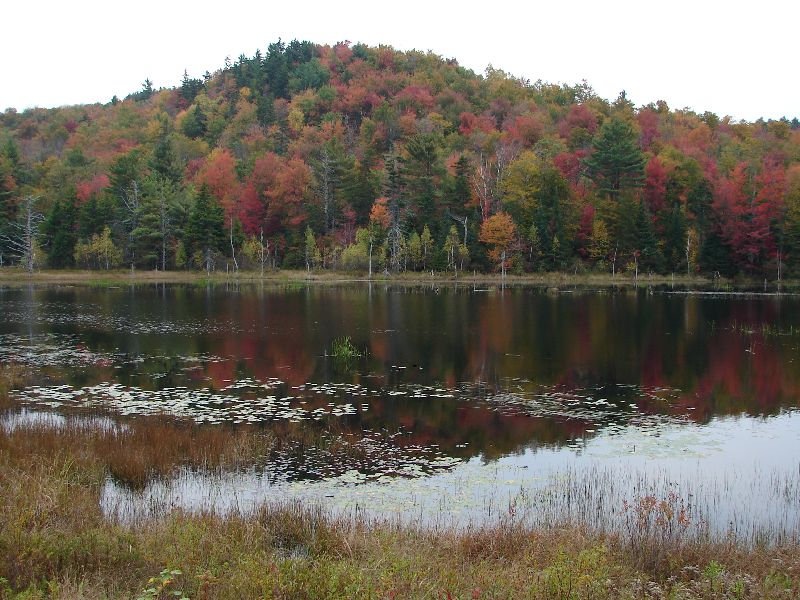 Day 35 - New Hampshire Pond & Fall Colors