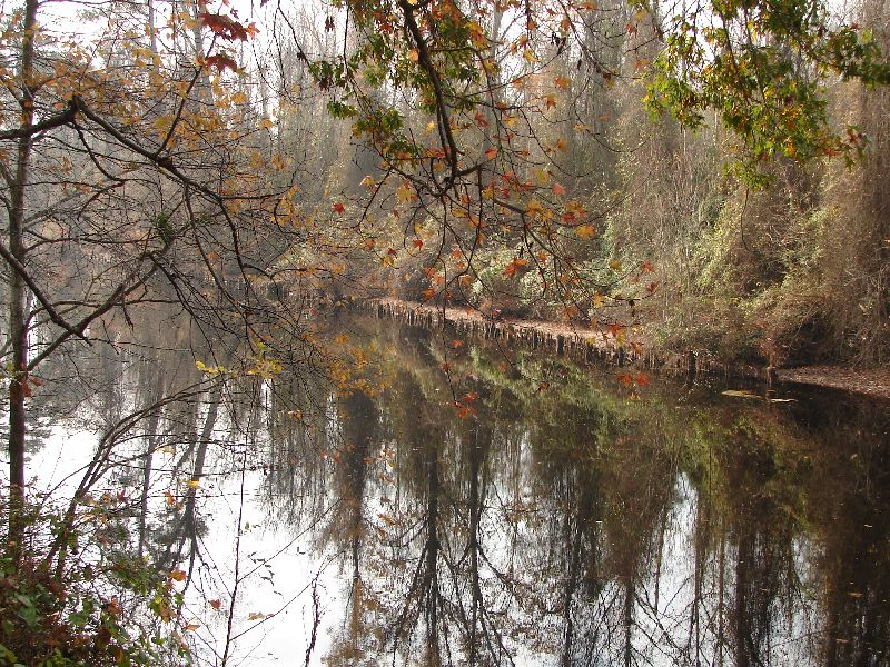Day 98 - Dismal Swamp Canal