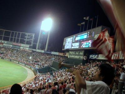 Baseball Carps