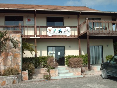 Animal Assistance and Adoption Center