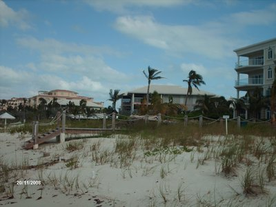 Beach Dunes
