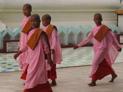 Nuns in Burma