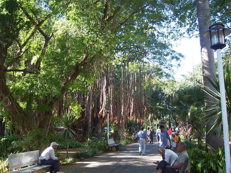 Public Park, Port Louis,
