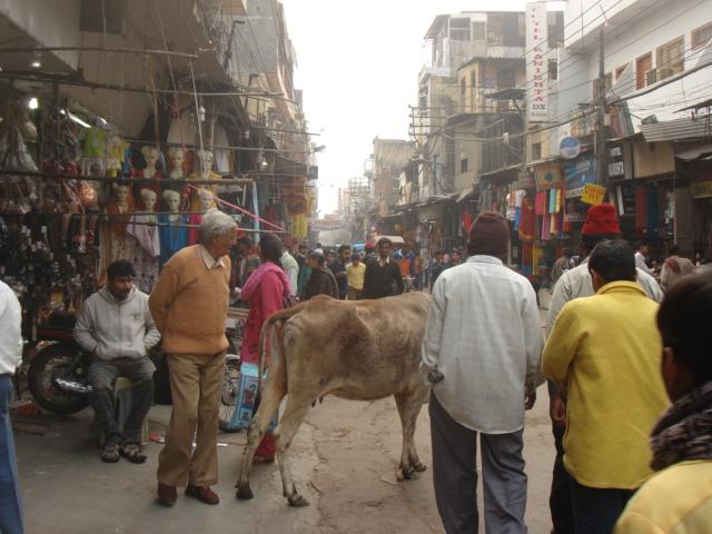 chaotism in Delhi