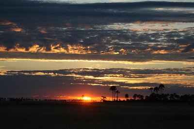 Sunset on the Kalahari