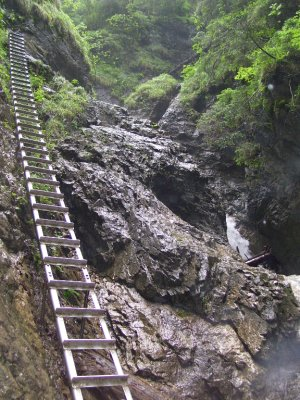 ladders up the rock