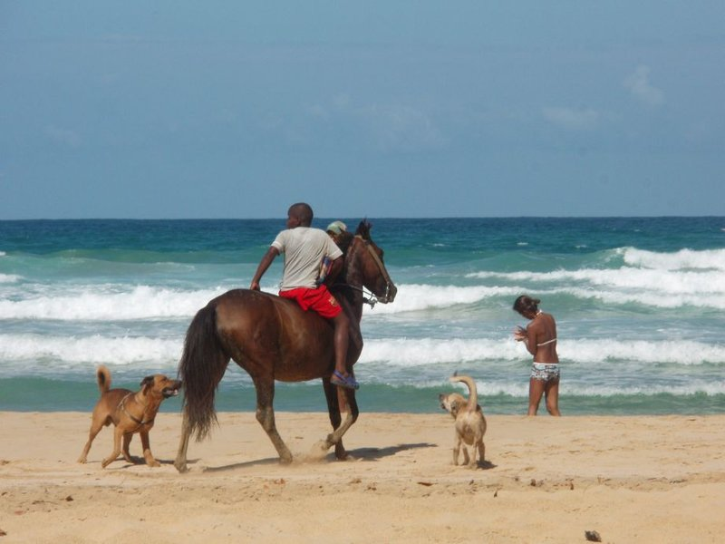 Bocas del Toro - Wizzard beach