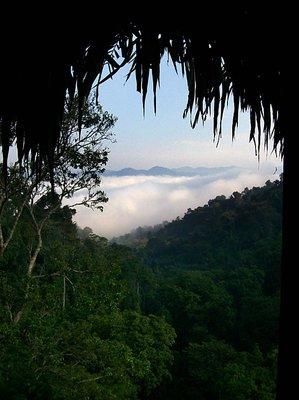 bokeo morning mist