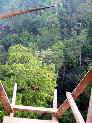 bokeo - zipline jump off platform