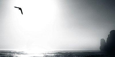 ocean drive 1