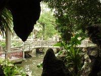 3LouLimIoc_Garden_4.jpg