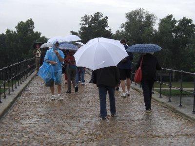 Sur Le Pont d'Avignon June 2010