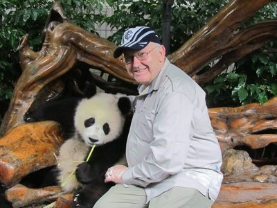 Pandamonium at Chengdu
