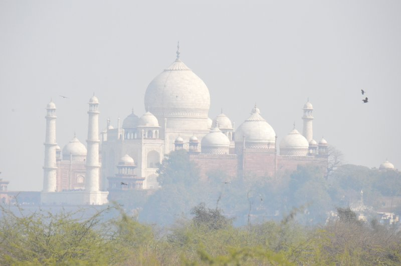 Taj from the road into Agra