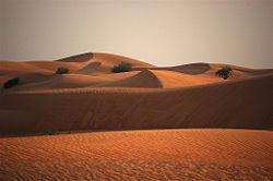 Margham desert