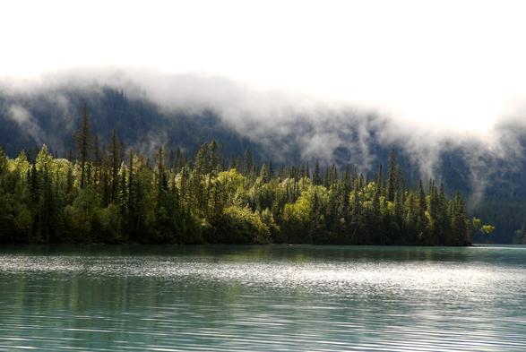 Kinney lake
