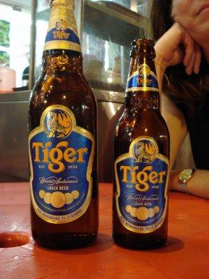 6_tiger_INDIA.jpg