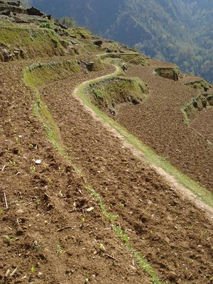 nepal_trek_levels