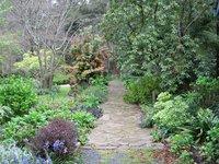 Sassafras Gardens