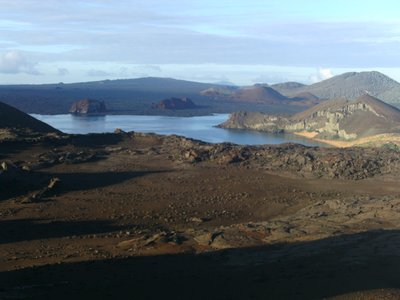 Galapagos_..a_2_328.jpg