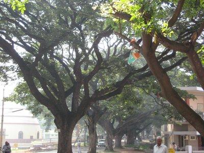 Mysore_008.jpg