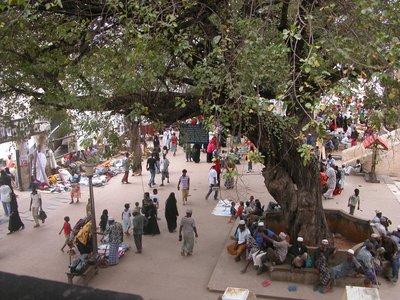 Town Square - Lamu Town