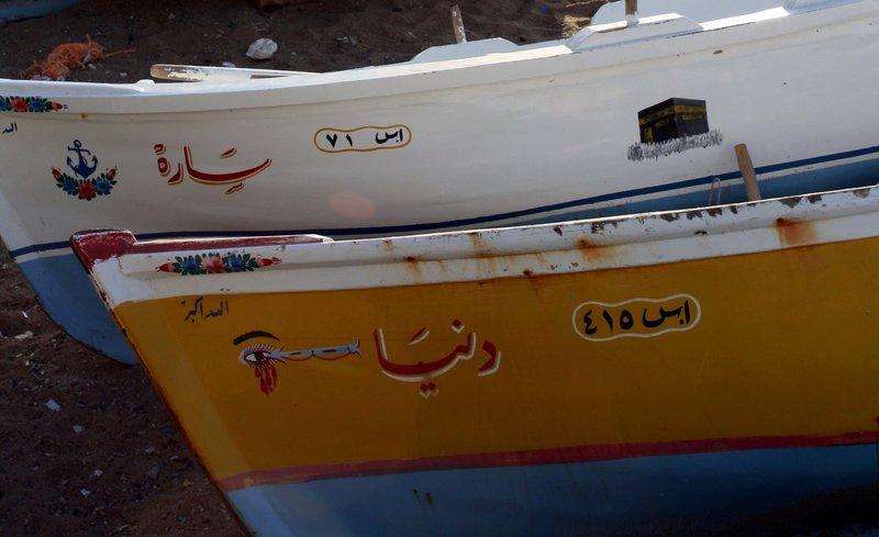 Egyptian Life #2