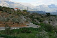 A winding road in Andalusia.