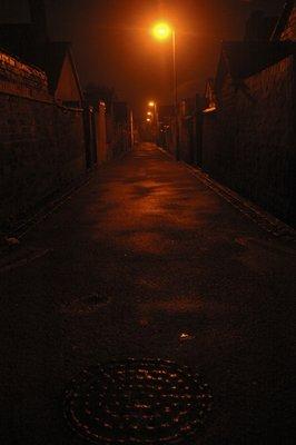 Shelton Alley