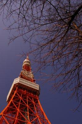 Tokyo Tower in winter
