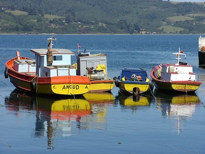Fishing boats in Ancud Harbor, Chiloe, Isla Grande